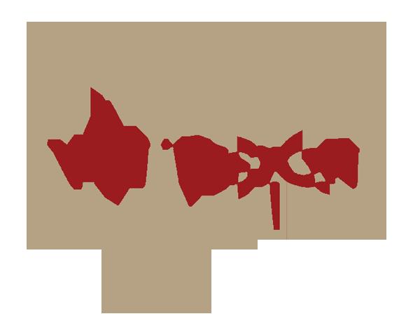 VNVision logo